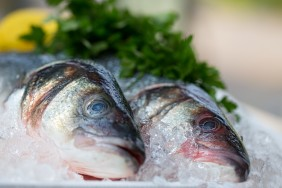 Food Photography, commercial photography. Sea Bass, Fish Pictures